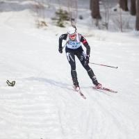 Кубок мира по биатлону в Австрии