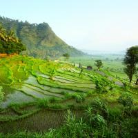 Дополнительный бонус +1% при бронировании туров на Бали