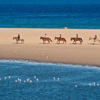 Пляжный отдых в Chia Laguna Resort с пользой для тела