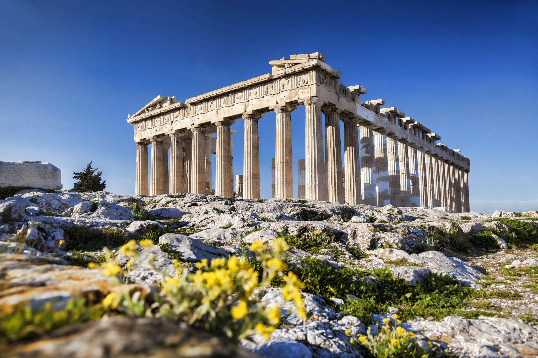 Картинки по запросу афины