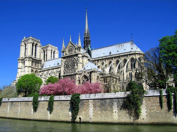 Париж. Собор Парижской Богоматери в цветах