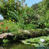 Ботанический сад Ла Мортелла