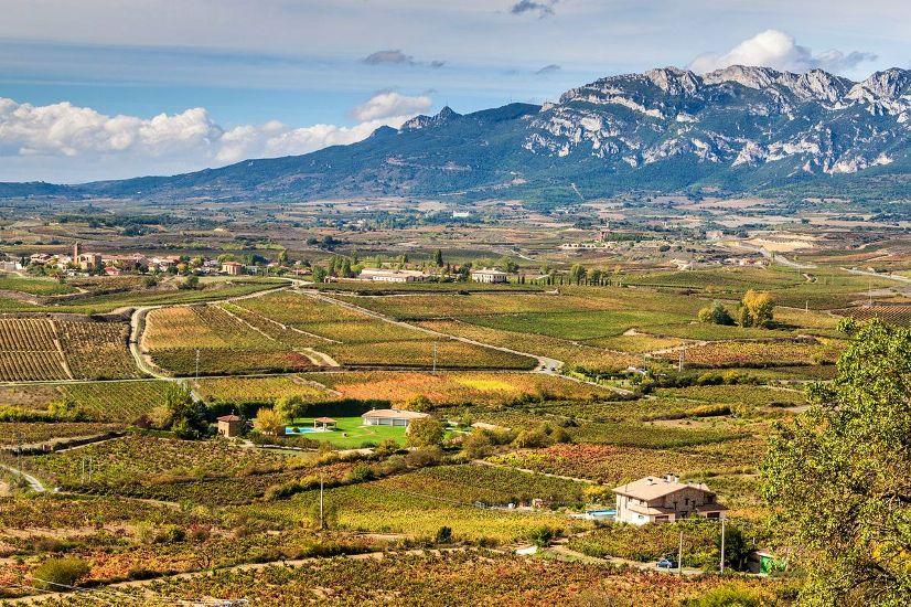 Страна Басков. Лагуардия. Панорама местности с виноградниками